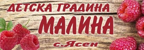 ДГ МАЛИНА - С. Ясен